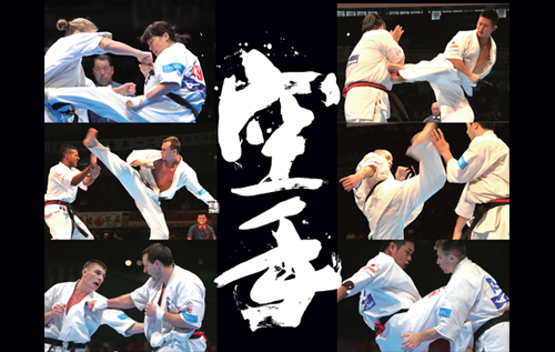 ShinKyokushin Karate